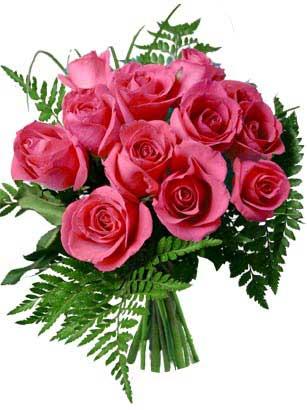 rose_new2007m.jpg